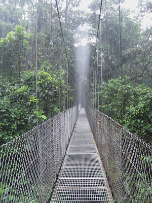 Arenal Hanging Bridges Rain Forest Park
